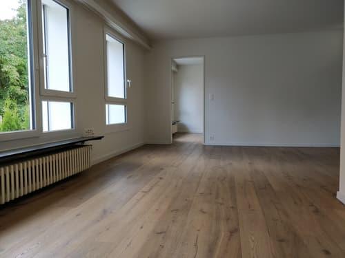 """Schöne 2½-Zimmer """"Single""""-Wohnung nahe Stadtgrenze (1)"""
