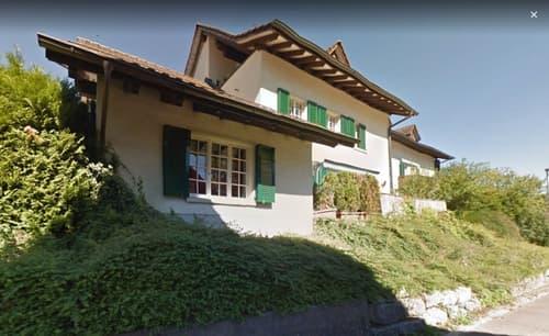 Dachwohnung in Windlach (1)