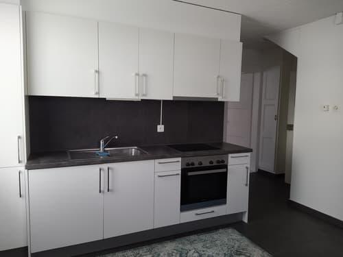 Appartement 2 pièces rénové à Gimel (1)