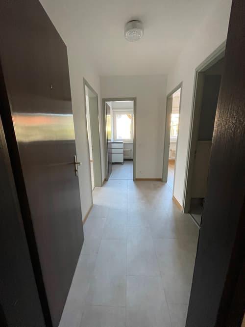 Appartamento ultimo piano, penultimo e primo piano a Savosa (1)