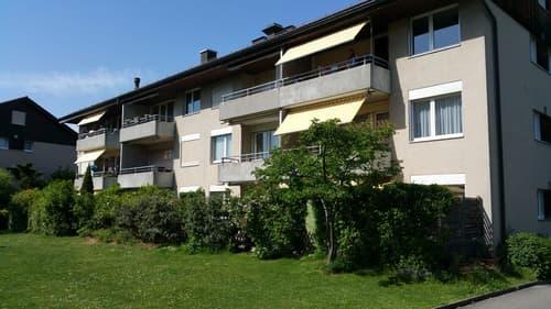 Frisch renovierte 4 1/4 Wohnung in ruhiger Lage zu vermieten (1)