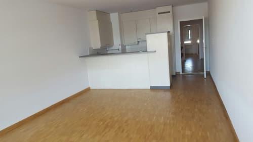 moderne, geräumige 3 Zimmer Duplex Wohnung zu vermieten (1)