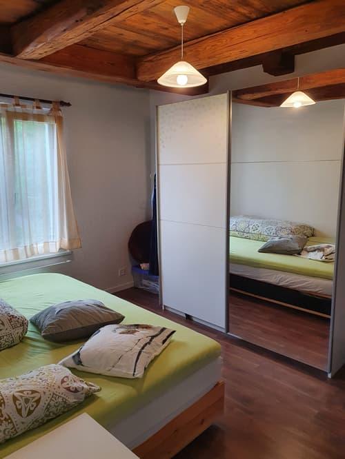 Schöne Altbauwohnung mit viel Holz zu vermieten (1)