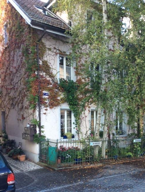 Mehrfamilienhaus in Winterthur-Veltheim (1)