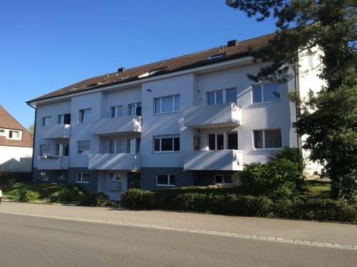 Schöne, helle 4.5-Zimmerwohnung im 3.OG, ca. 104.50 m2 (1)