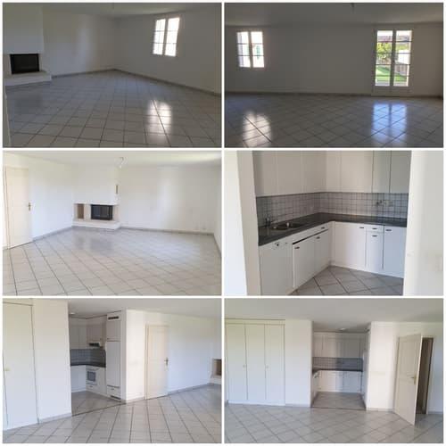 Charmant Appartement à Gingins (1)