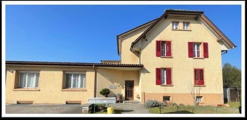 Mehrfamilienhaus in Dulliken (1)