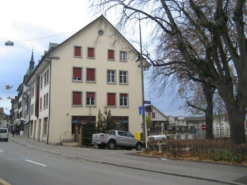 Helle 1.5-Zimmer-Wohnung an zentraler Lage (1)