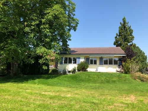 Renoviertes Einfamilienhaus im Grünen (1)