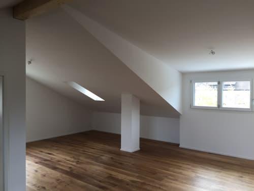 Helle, geräumige 2.5 Zi DG-Wohnung (1)