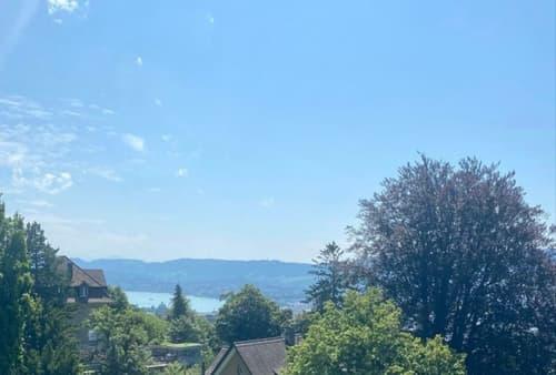 Herrschaftliche Altbauvilla mit Einliegerwohnung hoch über Zürich (1)