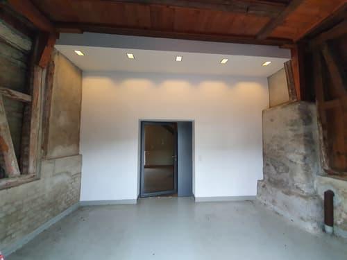 Historisch modernes Flarzhaus (1)