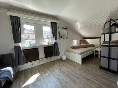 Möblierte Wohnung  Zentrum St. Gallen
