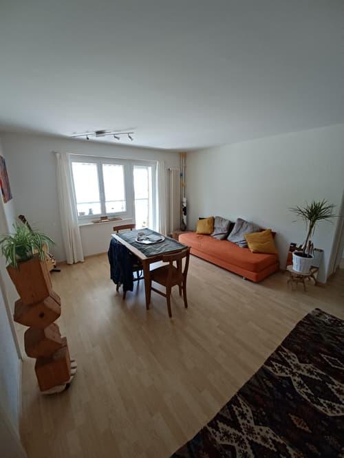 Wohnung in Egg b. Zürich (1)
