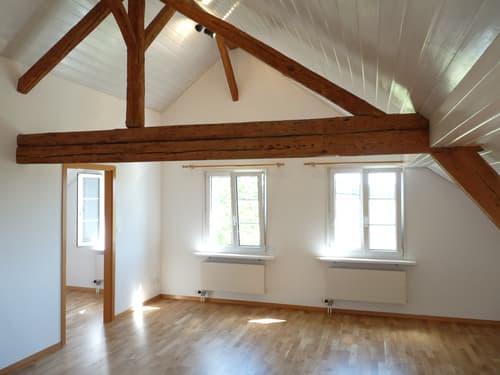 Charmante Dachwohnung