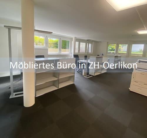 Modernes möbliertes Büro im Zentrum Zürich-Oerlikon (1)