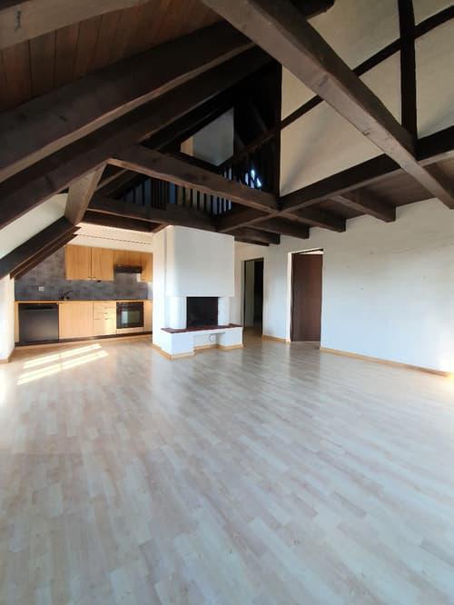 Dachwohnung mit Galerie an ruhiger Lage (1)