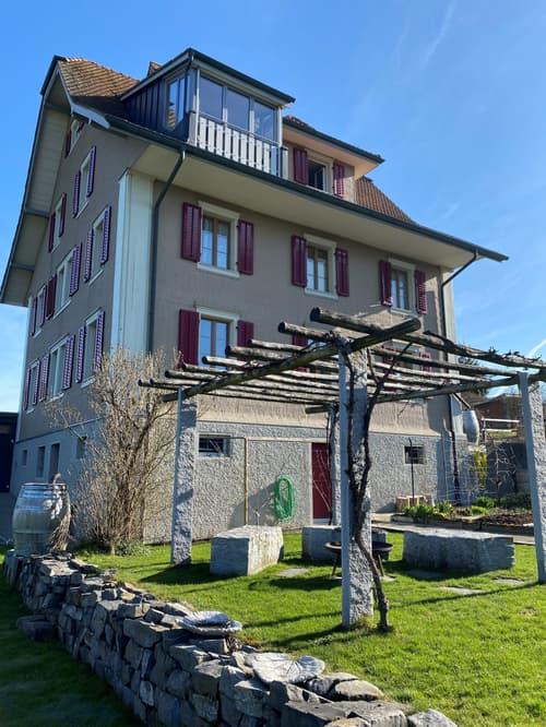 Wohnung in Knutwil (1)