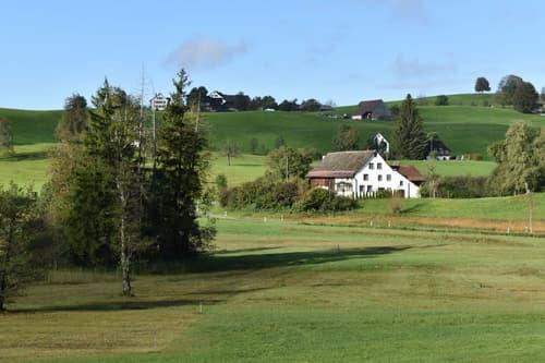 Ein einmaliges Bijou! Idyllisches Bauernhaus mit viel Potential vor den Toren Zürichs (1)