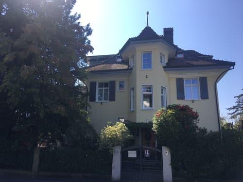 Attika Adlernest im Gönhard in Aarau