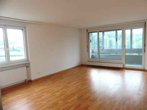 3½-Zimmer-Wohnung mit unverbaubarer Aussicht