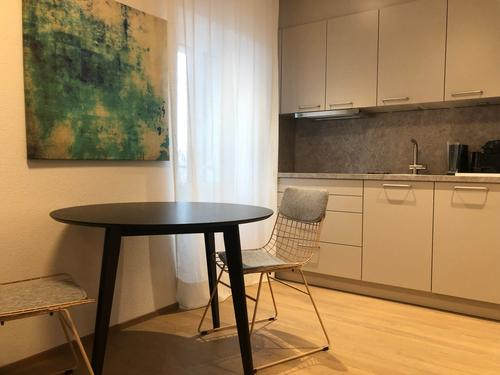 Furnished Apartment next to Zurich Mainstation and Europaalle (1)