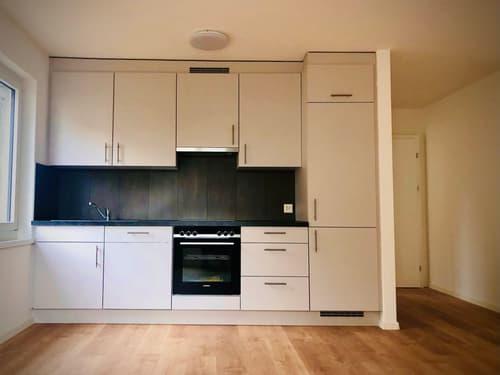 Helle 2-Zimmer-Stadtwohnung an zentraler Lage in Winterthur (1)