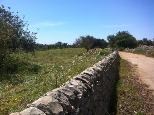 Verkaufe Immobilie von 7,4 Hektar Ackerland mit ländlichen Gebäude in Scicli