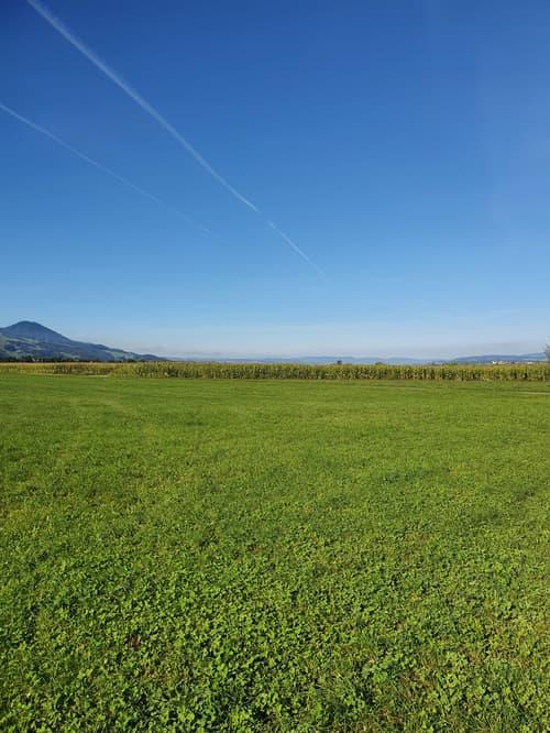 Bauland an Traumlage in Wangen/ Nuolen SZ (1)