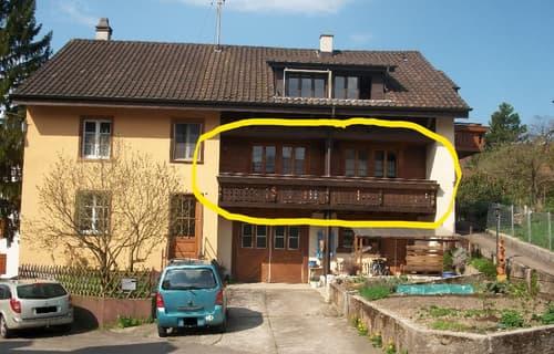 wunderschöne, grosse Chaletwohnung in Liesberg mit Terasse und Sitzplatz (1)