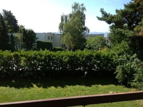 Lichtdurchflutetes Mehrfamilienhaus mit grossem Garten in Kreis7