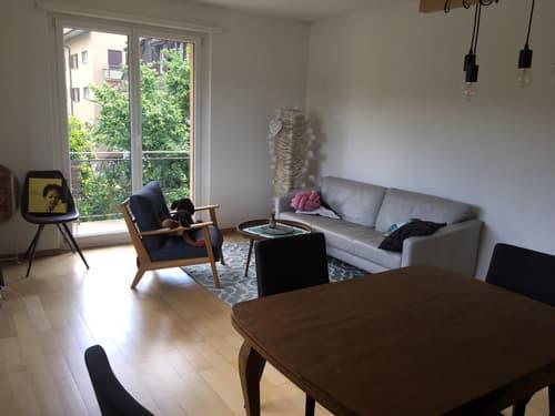 Helle 3-Zimmer Wohnung am Balgrist (1)