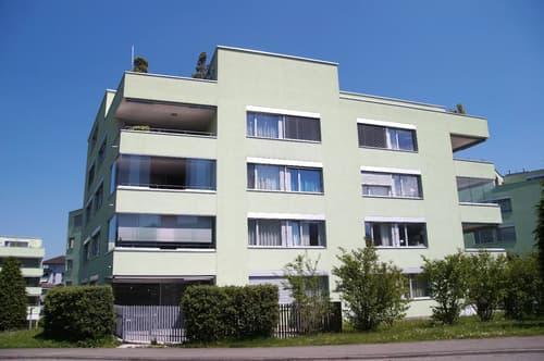 geräumige, moderne, sonnige 4.5- Zimmerwohnung mit Aussicht ins Grüne (1)