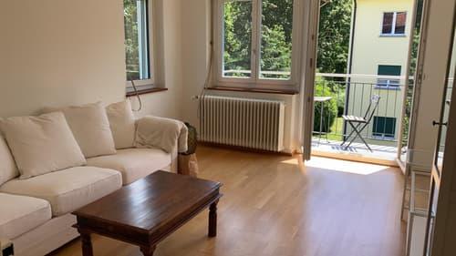 2.5 Zimmer Wohnung (1)