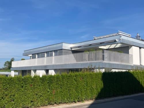 5 1/2-Zimmer-Attikawohnung in Allenwinden, Kanton Zug (1)