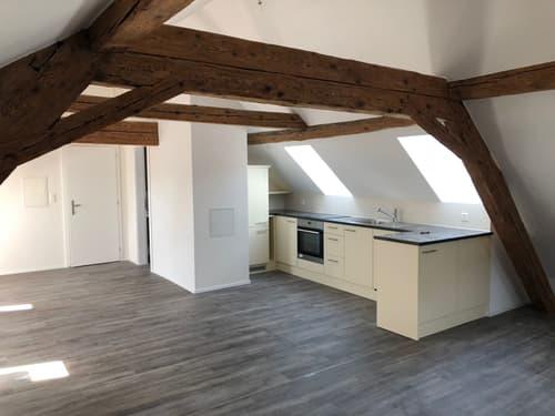 Erstbezug Loftwohnung / Dachwohnung