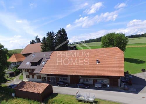 Ehmaliges Bauernhaus mit drei Wohnungen und viel Potenzial