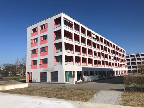 Volketswil ZH Zentralstrasse 15 Stoweg