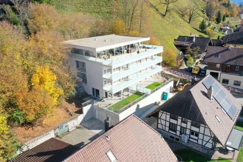4.5 Zimmer Neubau Wohnung in Langnau mit top Ausstattung!