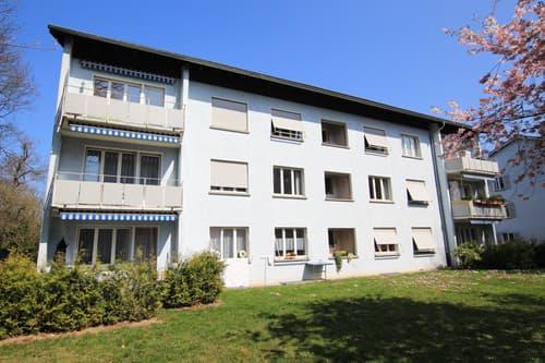 Singlewohnung nähe Bodensee