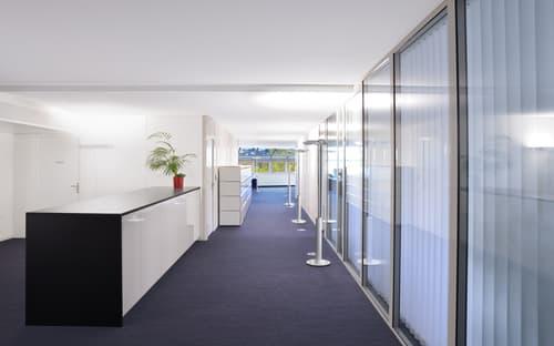 Espace de bureaux dans une atmosphère unique