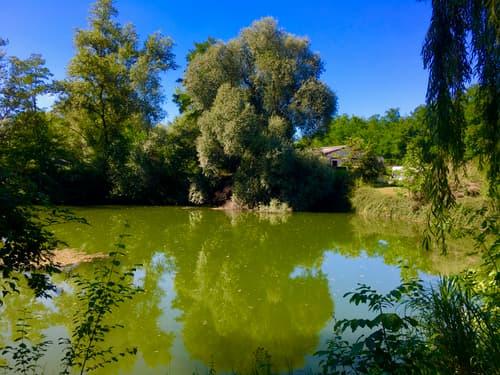 Privater Teich und Grundstück in Rosenau 8 km weit vom Basel