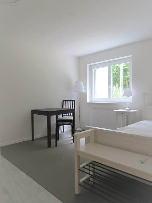 Neues, möbliertes Studio - Stadtgrenze Zürich