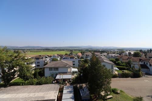 Unweit der Zuger Grenze wird ein grosses Mehrfamilienhaus/Bauland zum Verkauf angeboten