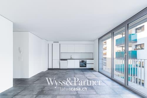 Locarno - Nuovo e ampio appartamento in centro