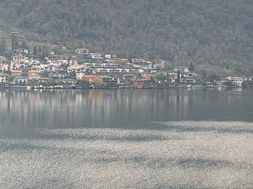 Palazzina vista lago - 5 appartamenti riattati - ottimo investimento