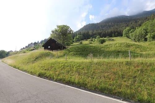 3-Zimmer-Rustico mit grossem Landstück und Aussicht / rustico di 3 locali da ristrutturare con 15000 m2 di prato