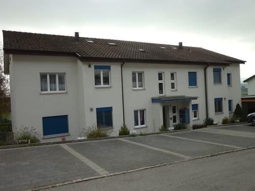 Heimelige 3.0-Zimmer-Dachwohnung