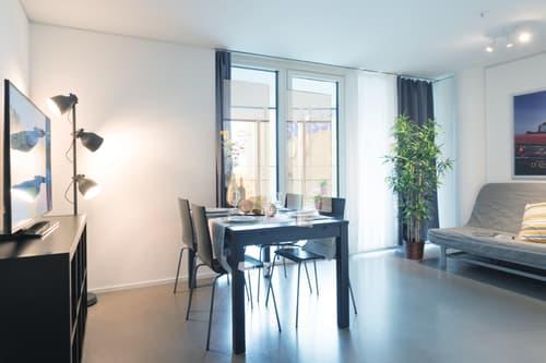 Komfortable und moderne 2.5 Zimmerwohnungen mit Terrasse