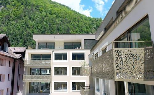 Zu verkaufen 4.5-Zimmer Gartenwohnung in Meiringen